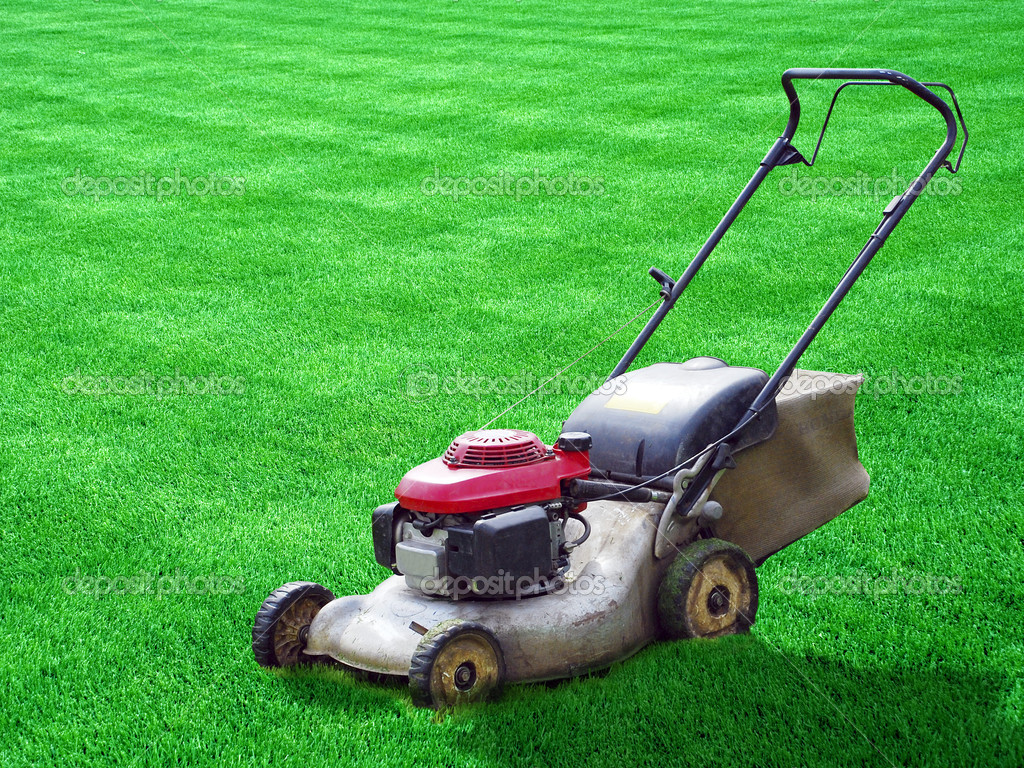 bulldog mowers afl round 3 adelaide v western bulldogs he used to cut 2517