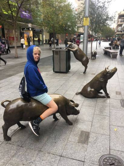Max and pigs